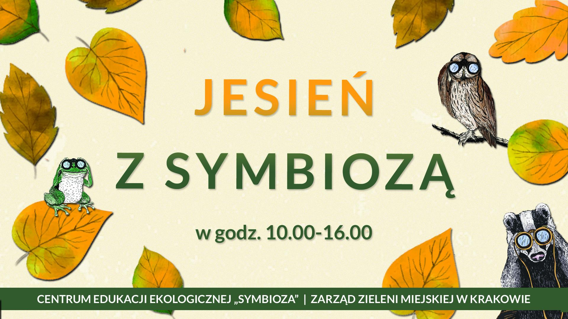 Żółty baner z jesiennymi liścmi przedstawiający akcję Jesień z Symbiozą - w tle rzekotka, puszczyk i borsuk z lornetkami