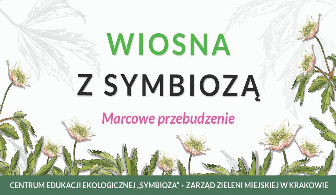 Jasny baner przedstawiający akcję Wiosna z Symbiozą - marcowe przebudzenie, w tle zawilce gajowe
