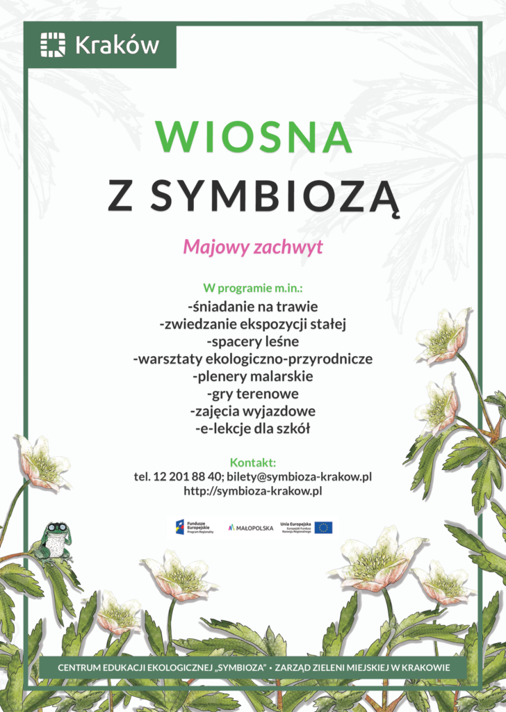 Jasny plakat przedstawiający akcję Wiosna z Symbiozą - majowy zachwyt, wyszczególniający aktywności - w tle zawilce gajowe oraz siedząca rzekotka